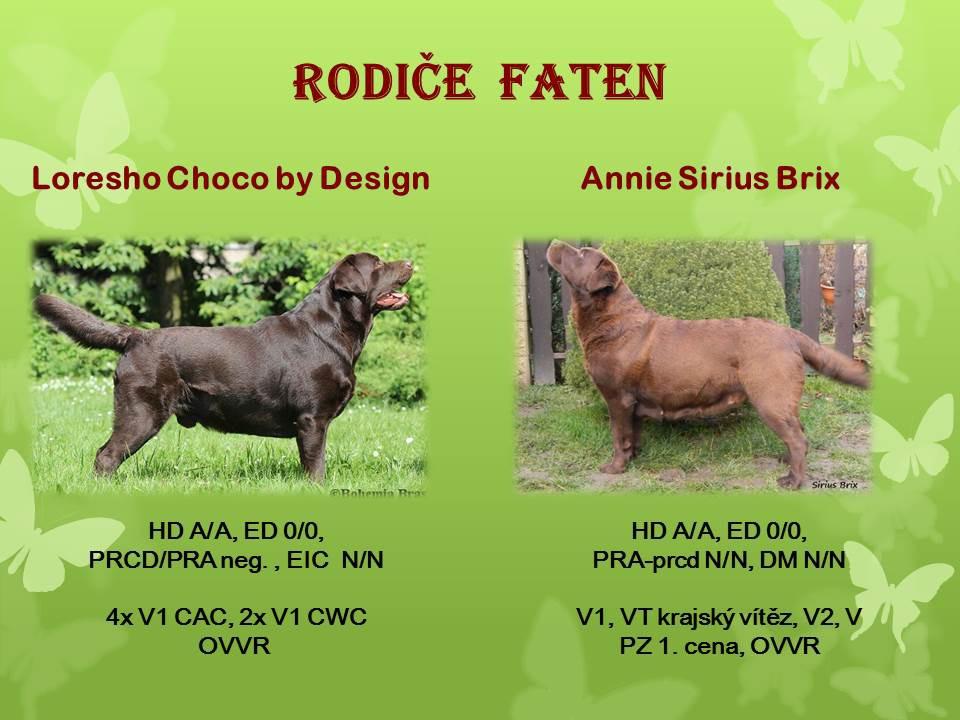 rodice-faten.jpg